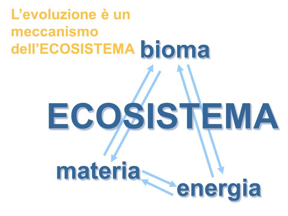 materiamateria energiaenergia biomabioma ECOSISTEMAECOSISTEMA L'evoluzione è un meccanismo dell'ECOSISTEMA