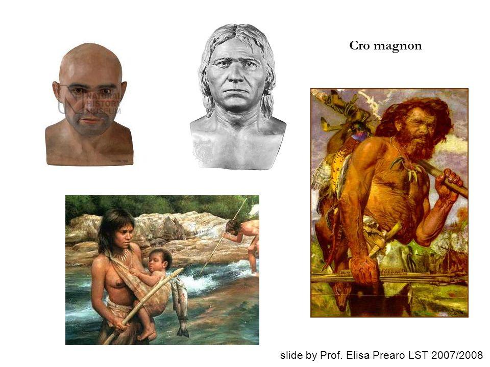 Cro magnon slide by Prof. Elisa Prearo LST 2007/2008