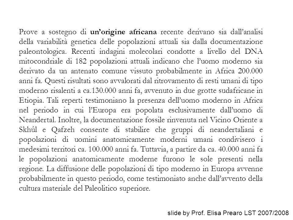 Prove a sostegno di un'origine africana recente derivano sia dall'analisi della variabilità genetica delle popolazioni attuali sia dalla documentazion