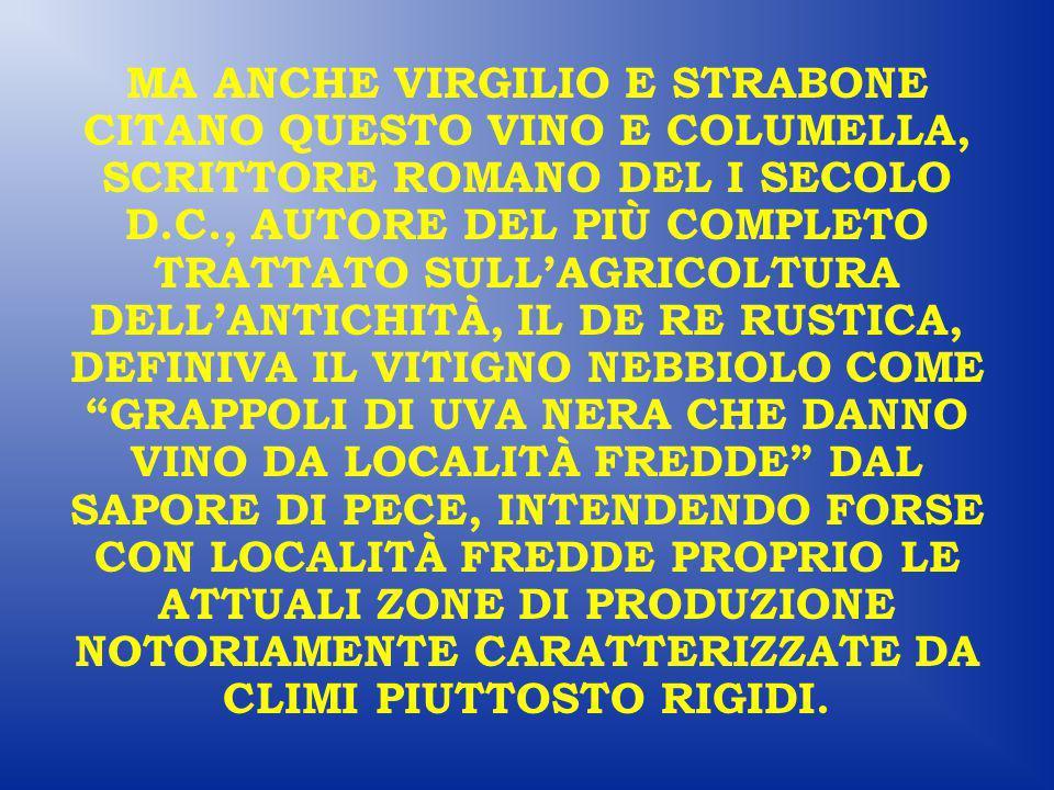 MA ANCHE VIRGILIO E STRABONE CITANO QUESTO VINO E COLUMELLA, SCRITTORE ROMANO DEL I SECOLO D.C., AUTORE DEL PIÙ COMPLETO TRATTATO SULL'AGRICOLTURA DELL'ANTICHITÀ, IL DE RE RUSTICA, DEFINIVA IL VITIGNO NEBBIOLO COME GRAPPOLI DI UVA NERA CHE DANNO VINO DA LOCALITÀ FREDDE DAL SAPORE DI PECE, INTENDENDO FORSE CON LOCALITÀ FREDDE PROPRIO LE ATTUALI ZONE DI PRODUZIONE NOTORIAMENTE CARATTERIZZATE DA CLIMI PIUTTOSTO RIGIDI.