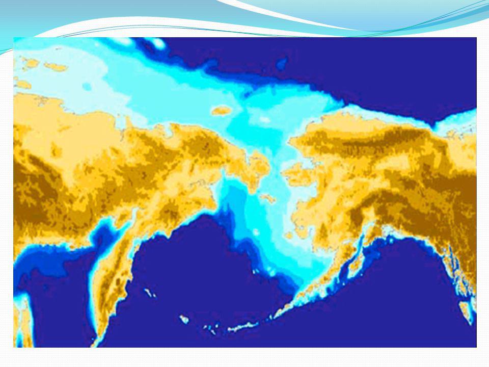 La scoperta dell'America L' America, abitata solo da animali, viene popolata probabilmente 25.000 anni fa quando, in due o tre ondate successive, alcuni cacciatori-raccoglitori eurasiatici (a loro volta originari dell'Africa) provenienti dalla Siberia e dalla penisola di Kamchatka, seguendo le piste dei mammuth e dei caribù attraverso lo stretto di Bering ghiacciato, giungono nel continente americano e lo colonizzano.