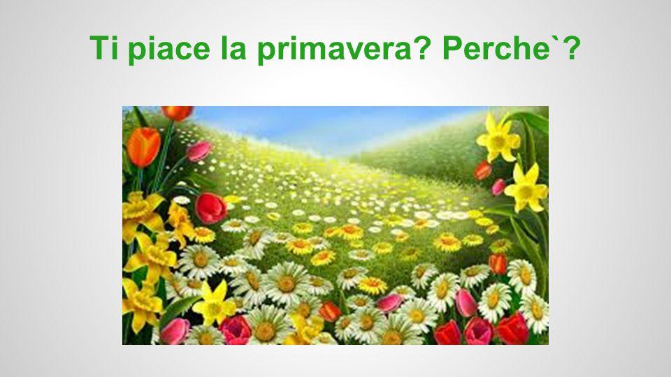 Ti piace la primavera? Perche`?