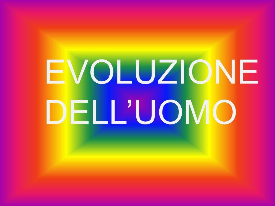 I suoi predecessori non avevano una conformazione fisica che permettesse loro di parlare , cosa invece possibile all homo erectus.
