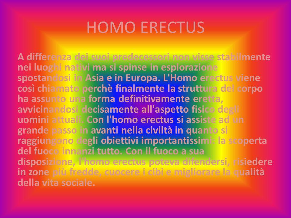 HOMO ERECTUS A differenza dei suoi predecessori non visse stabilmente nei luoghi nativi ma si spinse in esplorazione spostandosi in Asia e in Europa.