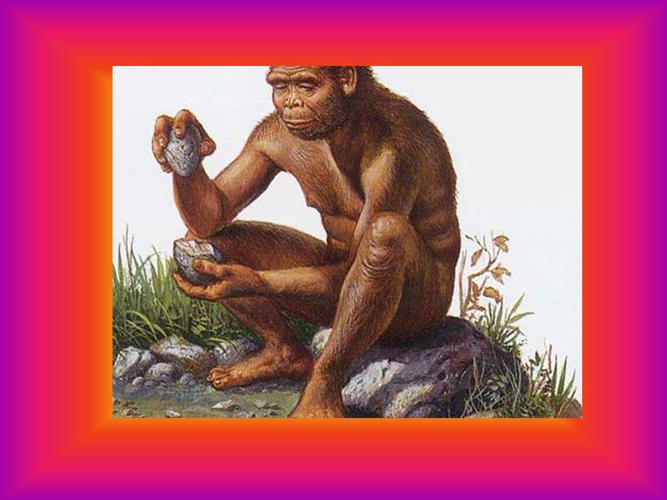 un milione e mezzo di anni fa si sviluppò in Africa l'homo erectus.