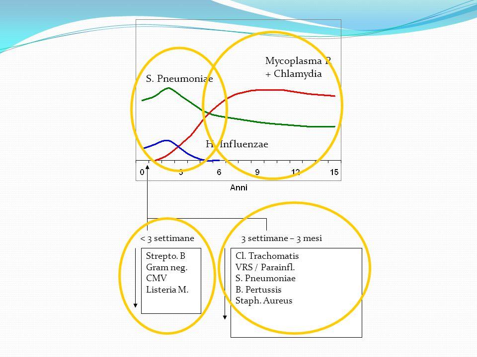 S. Pneumoniae H. Influenzae Strepto. B Gram neg. CMV Listeria M. < 3 settimane3 settimane – 3 mesi Cl. Trachomatis VRS / Parainfl. S. Pneumoniae B. Pe
