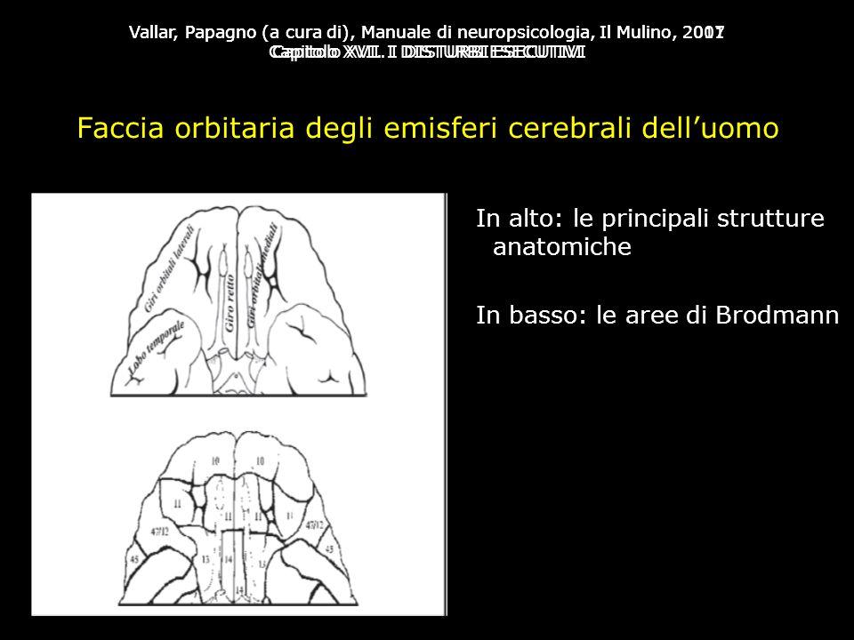 Vallar, Papagno (a cura di), Manuale di neuropsicologia, Il Mulino, 2007 Capitolo XVII. I DISTURBI ESECUTIVI Vallar, Papagno (a cura di), Manuale di n