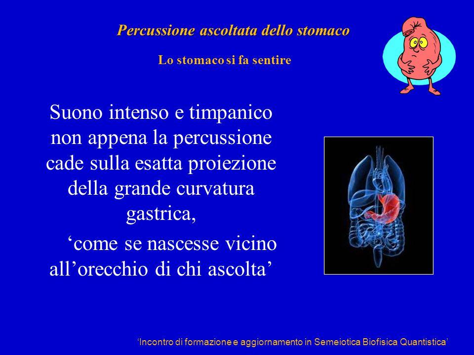 'Incontro di formazione e aggiornamento in Semeiotica Biofisica Quantistica' Percussione ascoltata dello stomaco Suono intenso e timpanico non appena