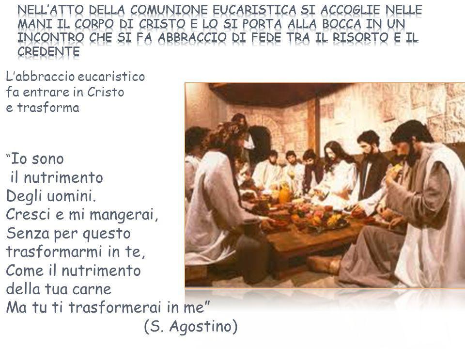 """L'abbraccio eucaristico fa entrare in Cristo e trasforma """" Io sono il nutrimento Degli uomini. Cresci e mi mangerai, Senza per questo trasformarmi in"""