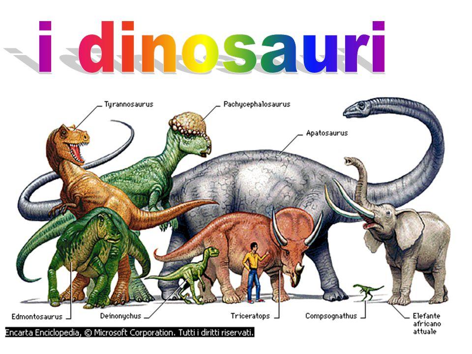 Uintatherium Nel Cenozoico, dopo la scomparsa dei grandi dinosauri, i mammiferi succedettero ai rettili come gruppo animale dominante sul pianeta.