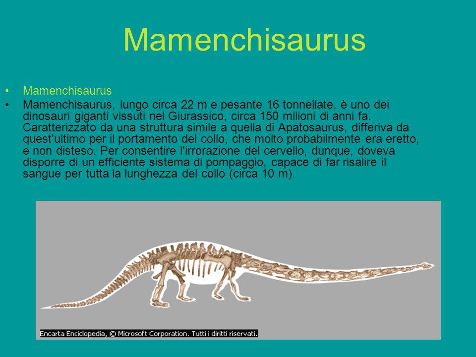 Diplomystus denatus Un fossile di pesce di acqua dolce (Diplomystus denatus) risalente a circa 50 milioni di anni fa (Eocene), proveniente dalla Green River Formation, nel Sud-Ovest dello Wyoming (Stati Uniti).