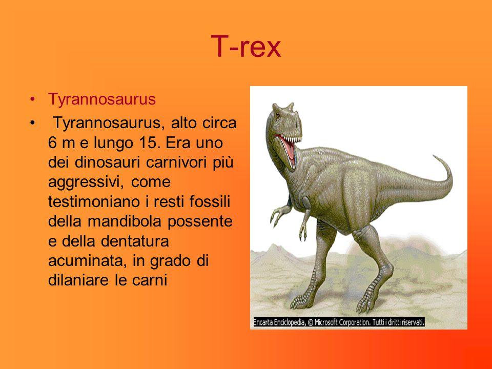 T-rex Tyrannosaurus Tyrannosaurus, alto circa 6 m e lungo 15.