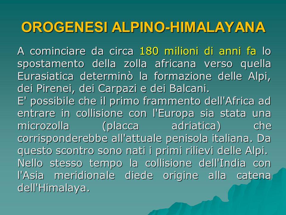 OROGENESI ALPINO-HIMALAYANA A cominciare da circa 180 milioni di anni fa lo spostamento della zolla africana verso quella Eurasiatica determinò la for