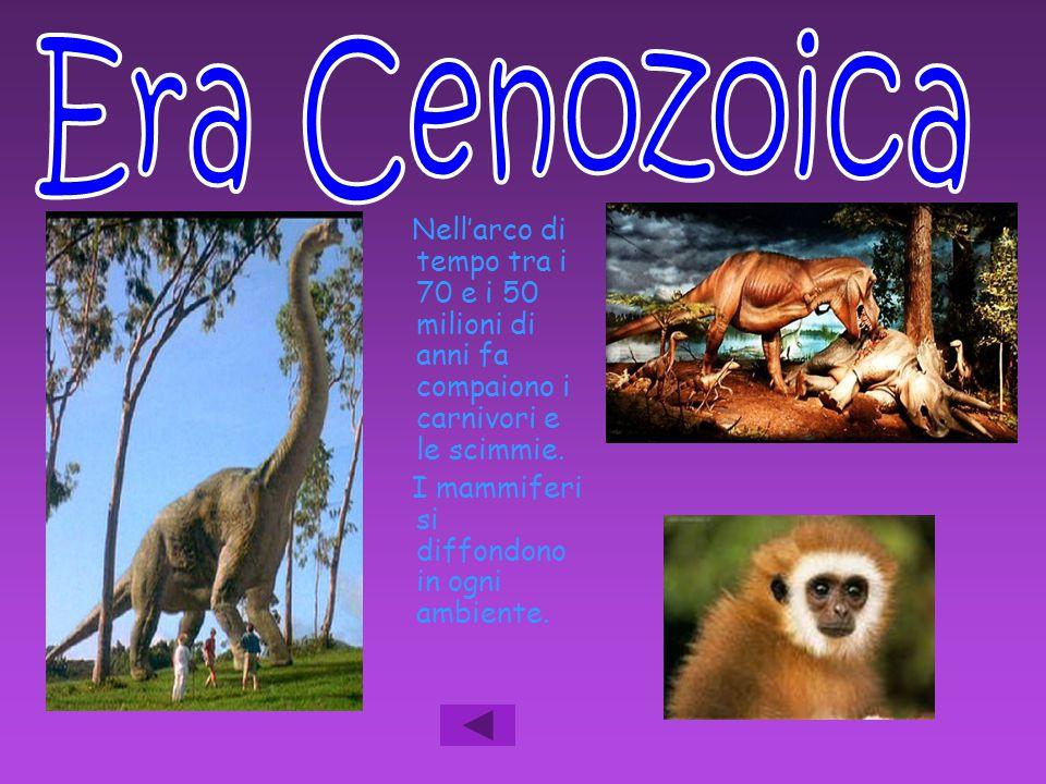 Nell'arco di tempo tra i 70 e i 50 milioni di anni fa compaiono i carnivori e le scimmie. I mammiferi si diffondono in ogni ambiente.