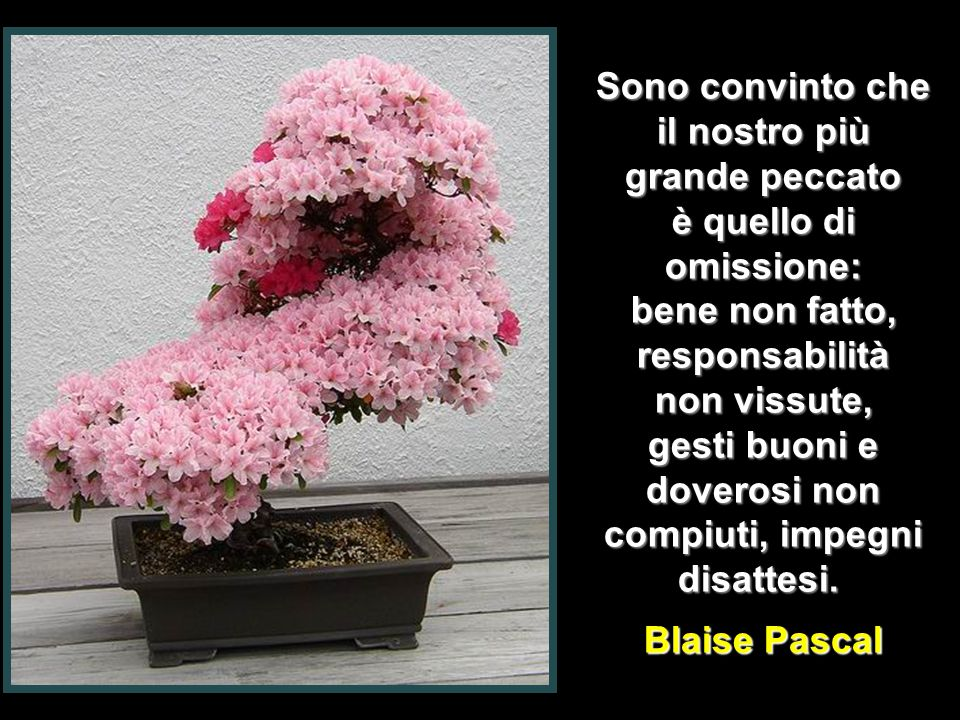 Sono convinto che il nostro più grande peccato è quello di omissione: bene non fatto, responsabilità non vissute, gesti buoni e doverosi non compiuti, impegni disattesi.