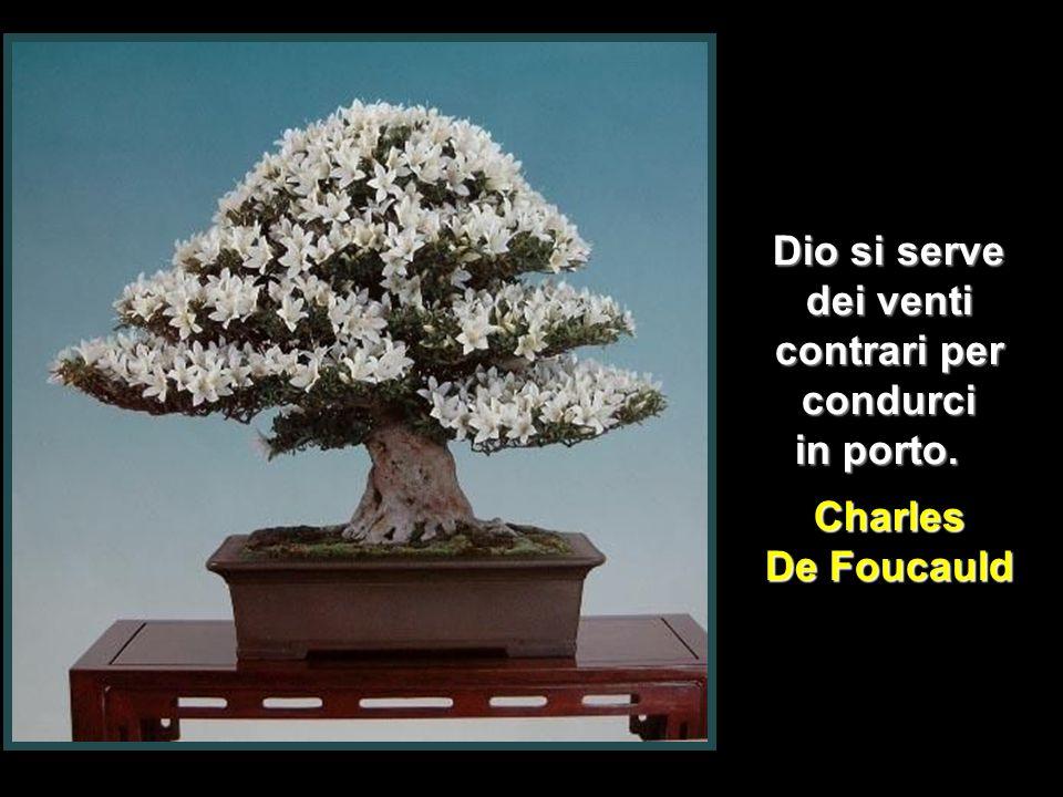 La Divina Eucaristia è l'incarnazione applicata a ciascuno di noi Leon Dehon