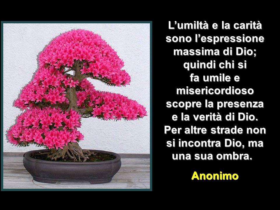 L'umiltà e la carità sono l'espressione massima di Dio; quindi chi si fa umile e misericordioso scopre la presenza e la verità di Dio.