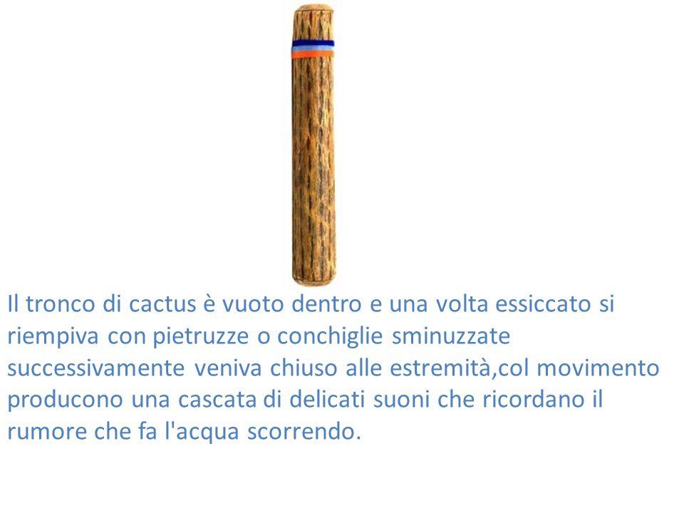 Come costruire un Bastone della pioggia Abbiamo costruito un bastone della pioggia per usarlo come strumento prendendo del materiale di recupero in casa.
