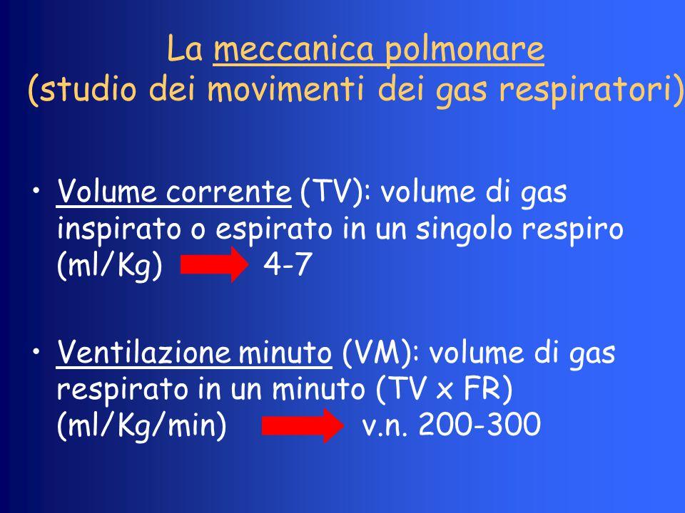 La meccanica polmonare (studio dei movimenti dei gas respiratori) Volume corrente (TV): volume di gas inspirato o espirato in un singolo respiro (ml/K