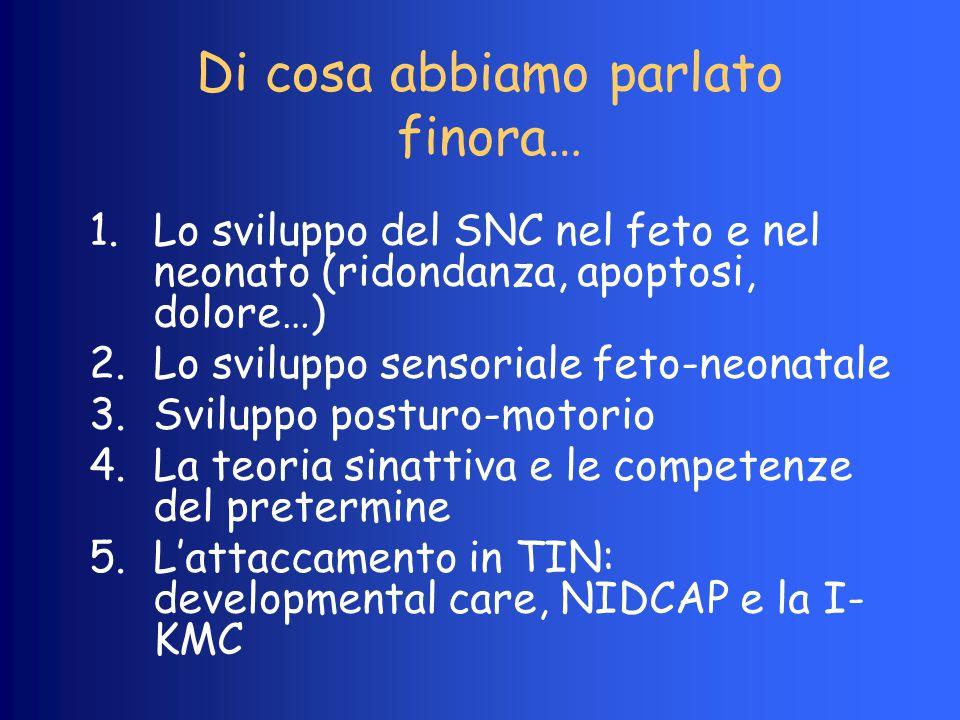 Di cosa abbiamo parlato finora… 1.Lo sviluppo del SNC nel feto e nel neonato (ridondanza, apoptosi, dolore…) 2.Lo sviluppo sensoriale feto-neonatale 3
