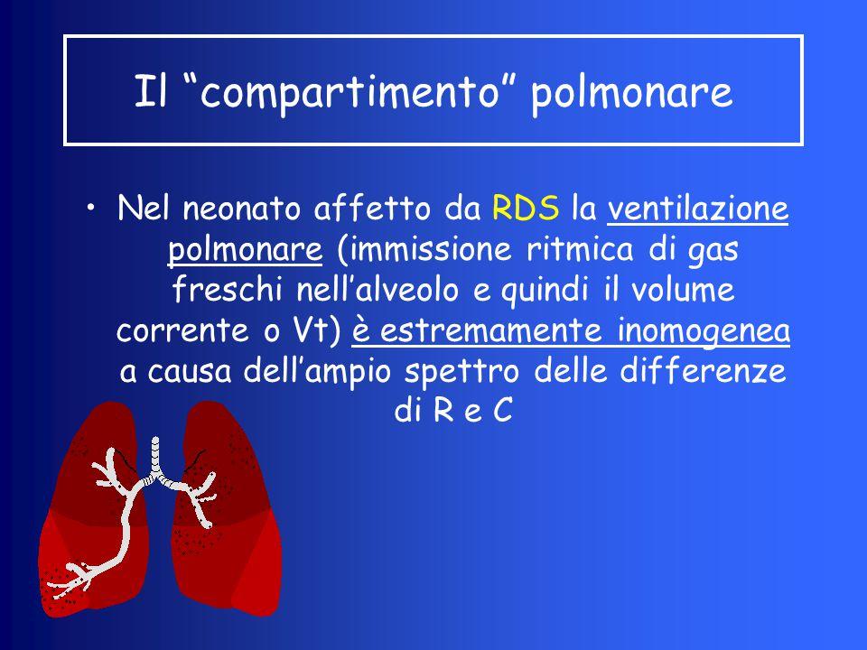 Nel neonato affetto da RDS la ventilazione polmonare (immissione ritmica di gas freschi nell'alveolo e quindi il volume corrente o Vt) è estremamente