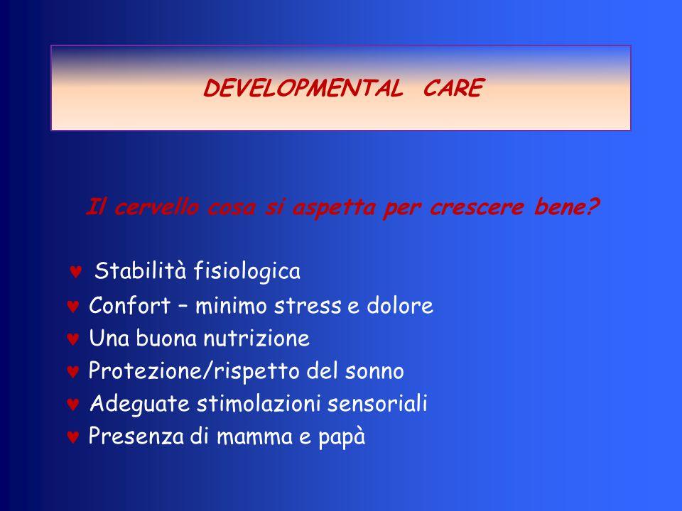 Periodo sacculare (25-37 sett): ramificazione dei dotti con formazione dei sacculi; aumento V polm.