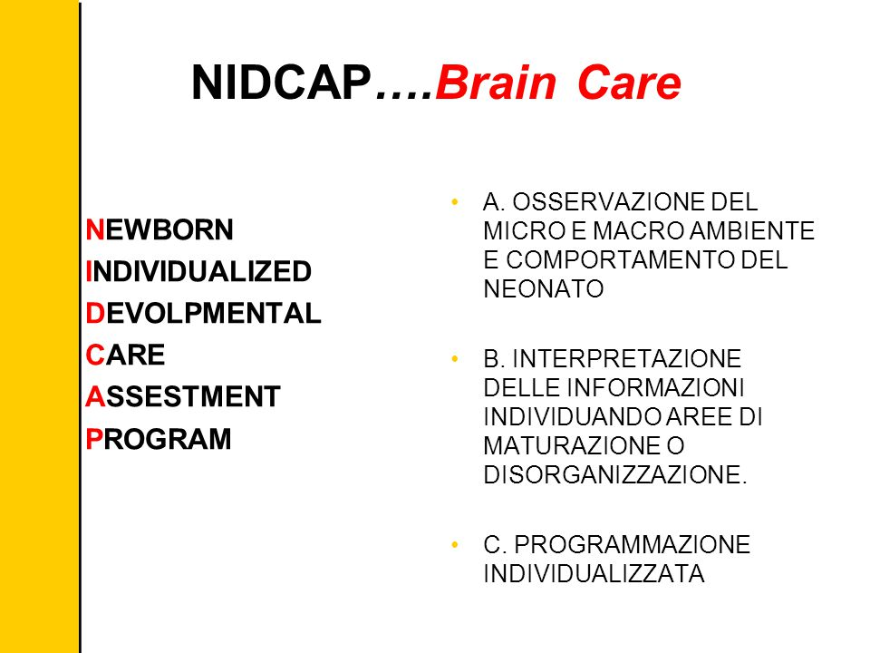 Six Sigma NEWBORN INDIVIDUALIZED DEVOLPMENTAL CARE ASSESTMENT PROGRAM NIDCAP….Brain Care A.