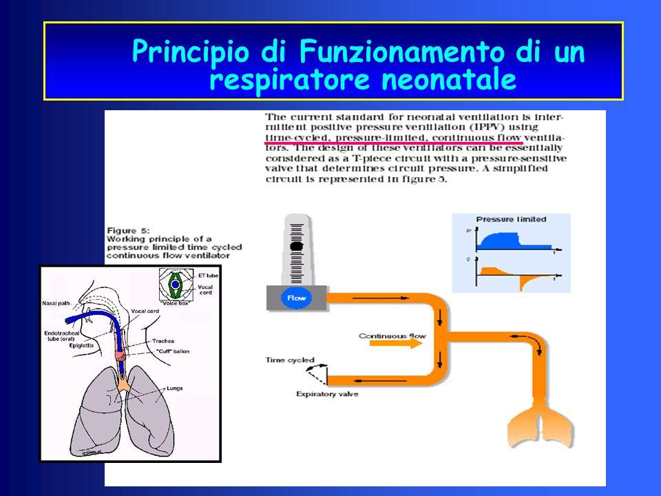 Flusso Continuo Ciclato a tempo Limitato in Pressione Principio di Funzionamento di un respiratore neonatale crociera Gentile concessione dott-ssa Col