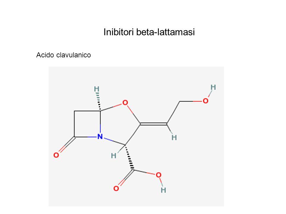 Inibitori beta-lattamasi Acido clavulanico