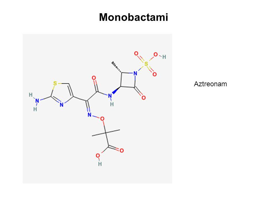 Aztreonam Monobactami