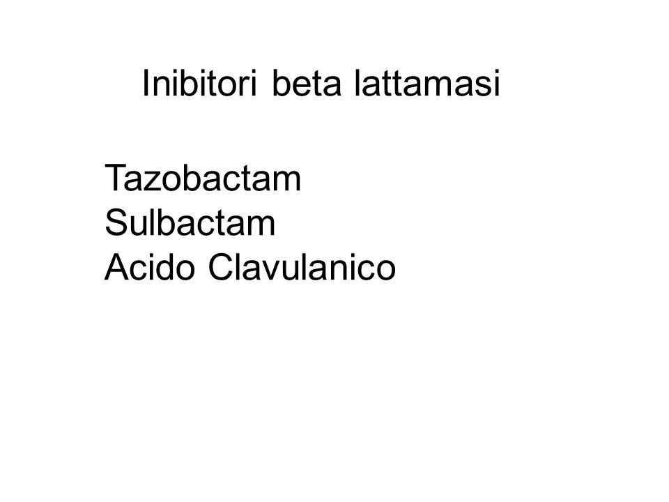 Inibitori beta lattamasi Tazobactam Sulbactam Acido Clavulanico