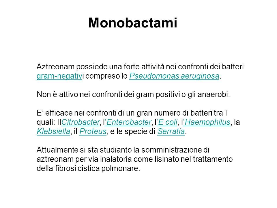 Monobactami Aztreonam possiede una forte attività nei confronti dei batteri gram-negativi compreso lo Pseudomonas aeruginosa. gram-negativPseudomonas