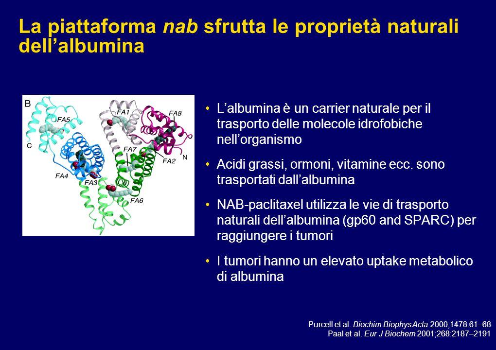 Ruolo chiave di SPARC nelle metastasi tumorali e nel legame dell'albumina ai tumori SPARC è regolata con meccanismi da VEGF e TGF-  1 Media il passaggio dell'espressione da E-caderina a N-caderina con il successivo aumento della migrazione cellulare e della capacità invasiva.