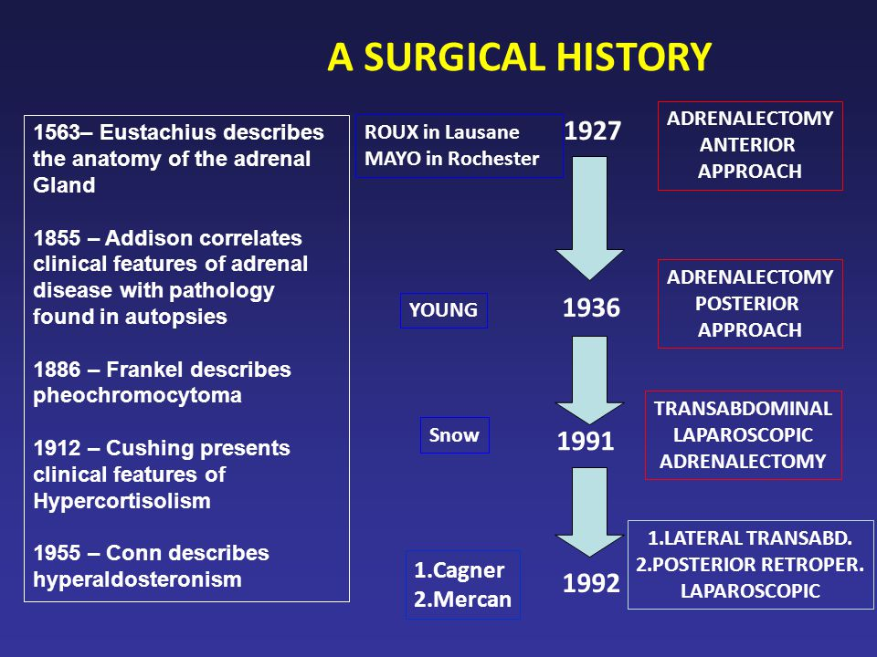 ADRENALECTOMY ANTERIOR APPROACH 1927 1936 ADRENALECTOMY POSTERIOR APPROACH TRANSABDOMINAL LAPAROSCOPIC ADRENALECTOMY 1991 ROUX in Lausane MAYO in Rochester YOUNG A SURGICAL HISTORY Snow 1.Cagner 2.Mercan 1992 1.LATERAL TRANSABD.