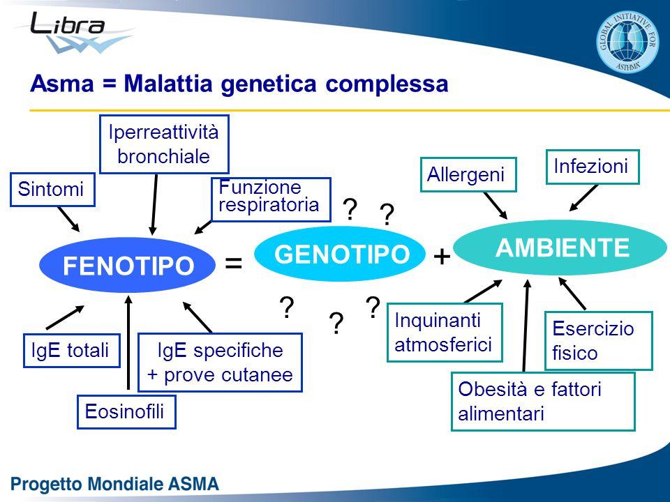 Asma = Malattia genetica complessa GENOTIPO AMBIENTE FENOTIPO = + ? ? ? ? ? IgE specifiche + prove cutanee Iperreattività bronchiale Sintomi IgE total