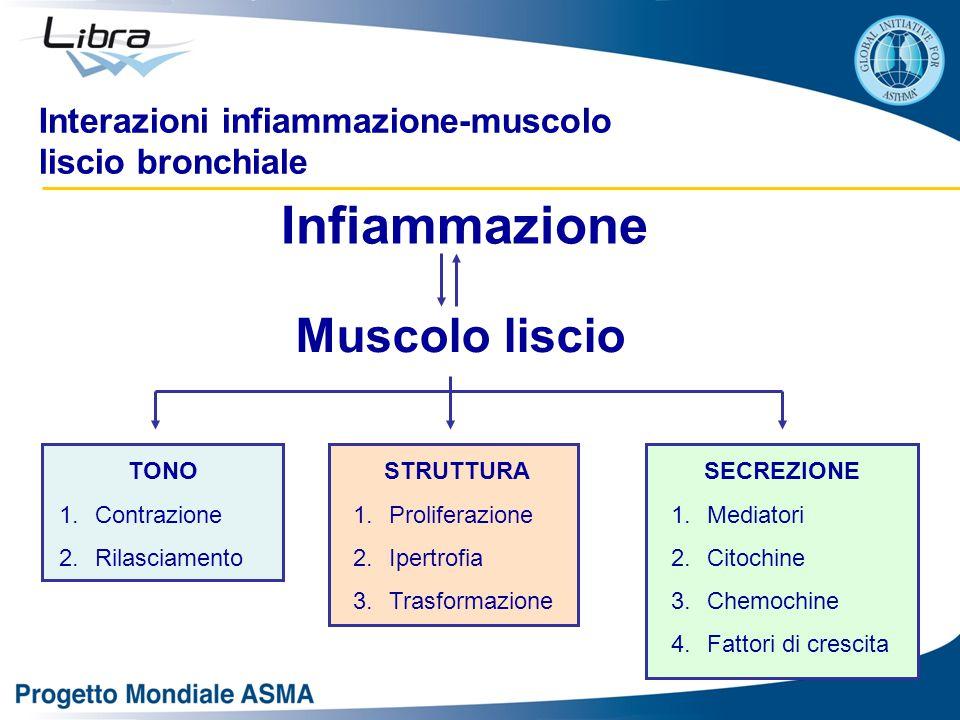 Interazioni infiammazione-muscolo liscio bronchiale Infiammazione Muscolo liscio TONO 1.Contrazione 2.Rilasciamento STRUTTURA 1.Proliferazione 2.Ipertrofia 3.Trasformazione SECREZIONE 1.Mediatori 2.Citochine 3.Chemochine 4.Fattori di crescita