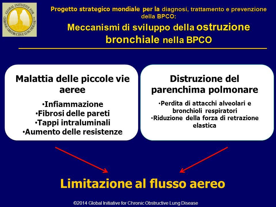 Malattia delle piccole vie aeree Infiammazione Fibrosi delle pareti Tappi intraluminali Aumento delle resistenze Distruzione del parenchima polmonare