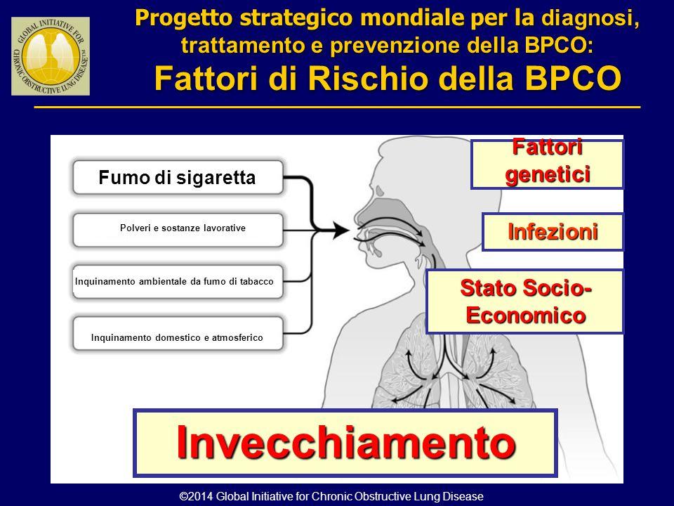 Fattorigenetici Infezioni Stato Socio- Economico Invecchiamento Inquinamento domestico e atmosferico Inquinamento ambientale da fumo di tabacco Polver