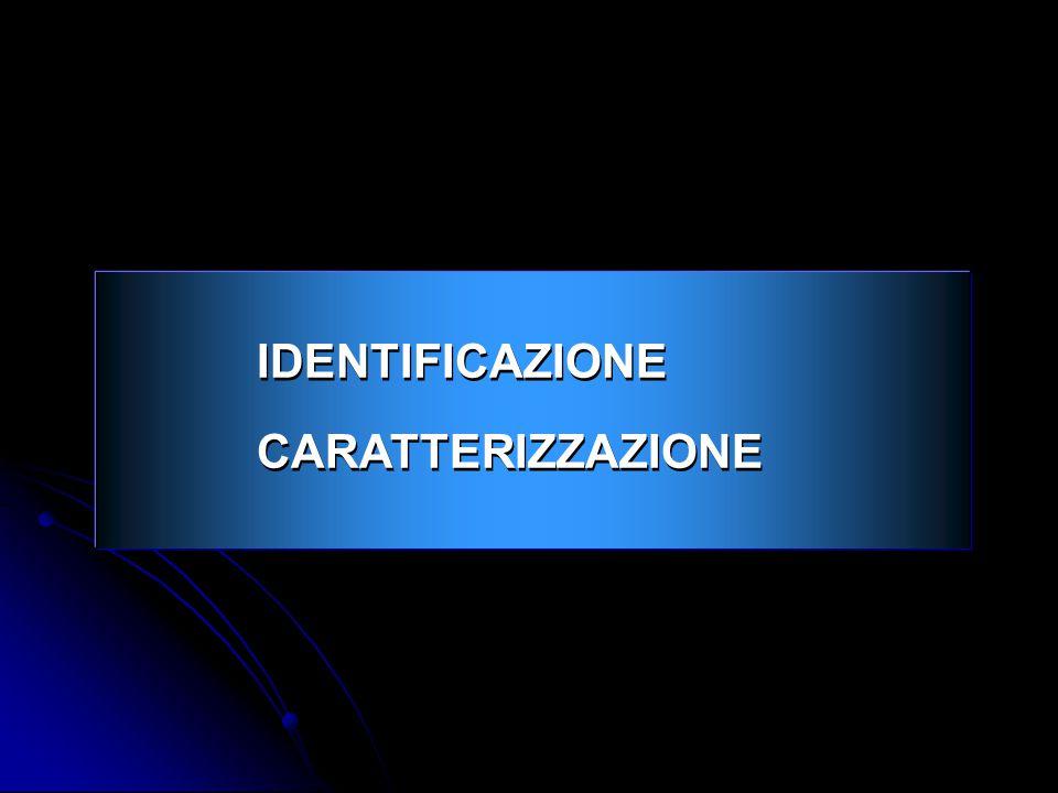 IDENTIFICAZIONE CARATTERIZZAZIONE IDENTIFICAZIONE CARATTERIZZAZIONE