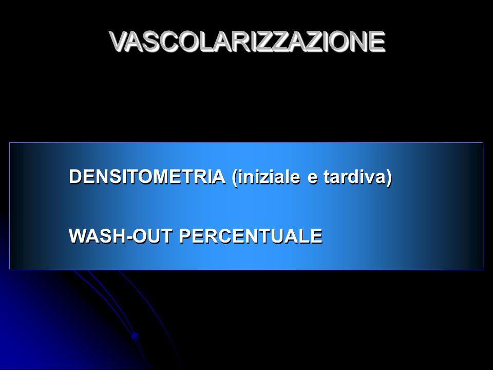 DENSITOMETRIA (iniziale e tardiva) WASH-OUT PERCENTUALE DENSITOMETRIA (iniziale e tardiva) WASH-OUT PERCENTUALE VASCOLARIZZAZIONEVASCOLARIZZAZIONE