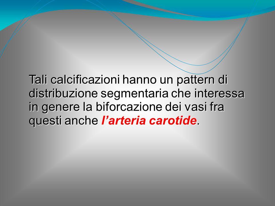 Tali calcificazioni hanno un pattern di distribuzione segmentaria che interessa in genere la biforcazione dei vasi fra questi anche l'arteria carotide