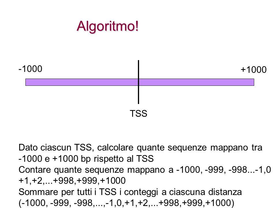 TSS -1000 +1000 Dato ciascun TSS, calcolare quante sequenze mappano tra -1000 e +1000 bp rispetto al TSS Contare quante sequenze mappano a -1000, -999, -998...-1,0 +1,+2,...+998,+999,+1000 Sommare per tutti i TSS i conteggi a ciascuna distanza (-1000, -999, -998,...,-1,0,+1,+2,...+998,+999,+1000) Algoritmo!