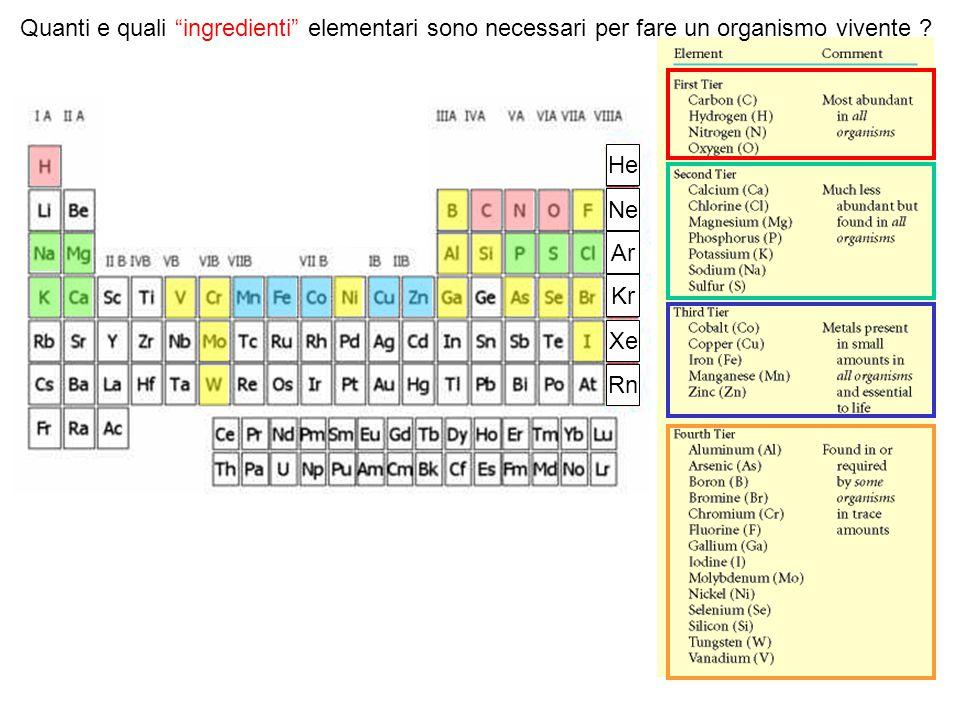 """He Ne Ar Kr Xe Rn Quanti e quali """"ingredienti"""" elementari sono necessari per fare un organismo vivente ?"""