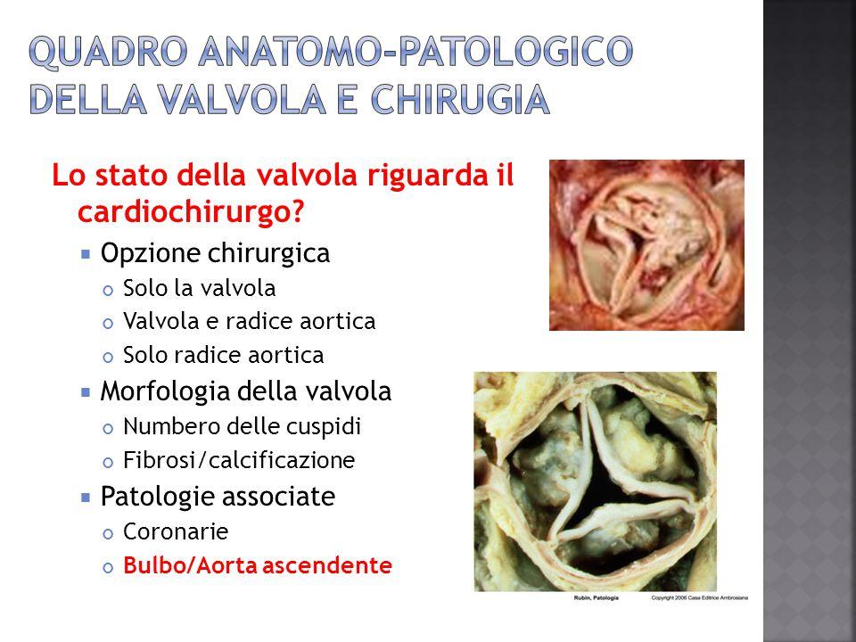 Lo stato della valvola riguarda il cardiochirurgo?  Opzione chirurgica Solo la valvola Valvola e radice aortica Solo radice aortica  Morfologia dell