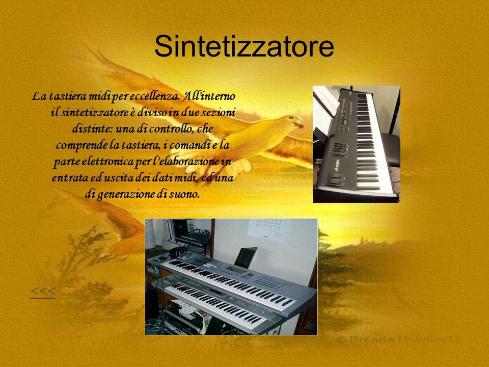 Sintetizzatore La tastiera midi per eccellenza. All'interno il sintetizzatore è diviso in due sezioni distinte: una di controllo, che comprende la tas