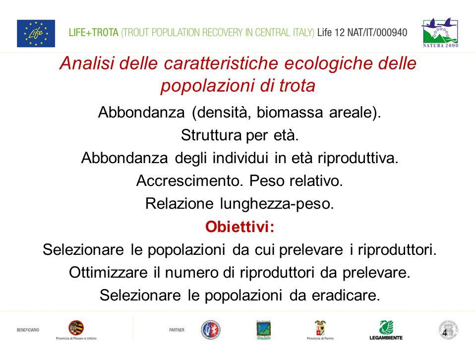 Analisi delle caratteristiche ecologiche delle popolazioni di trota Abbondanza (densità, biomassa areale).