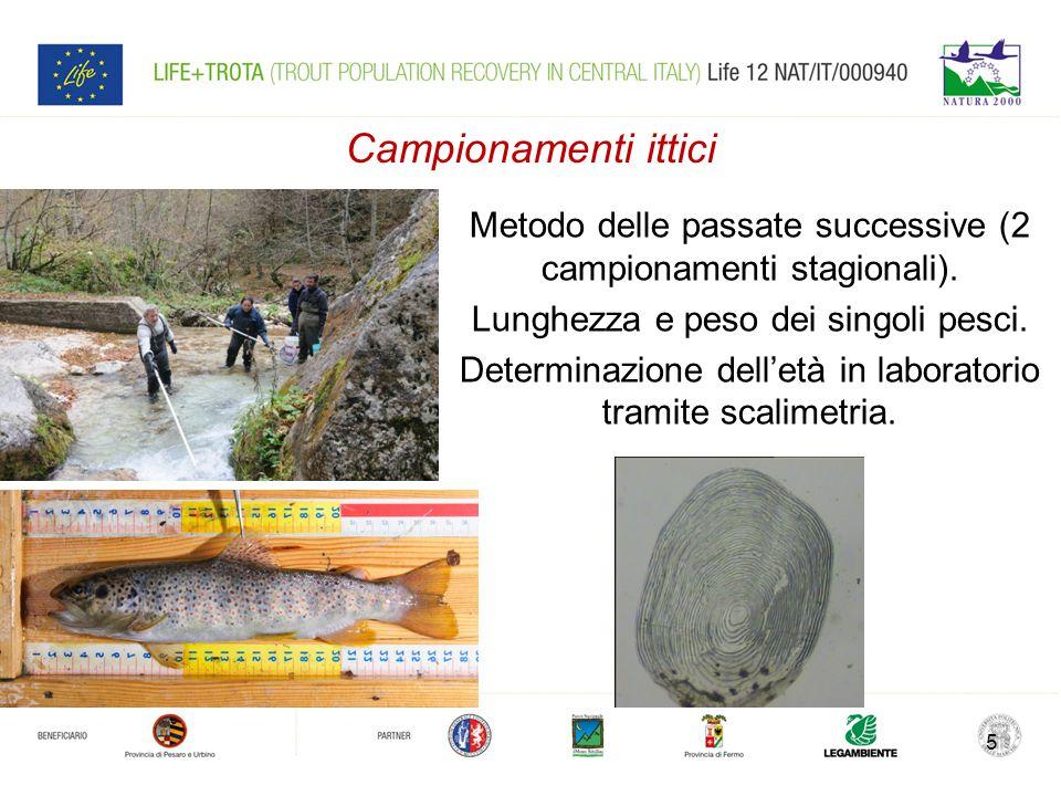 Campionamenti ittici Metodo delle passate successive (2 campionamenti stagionali).