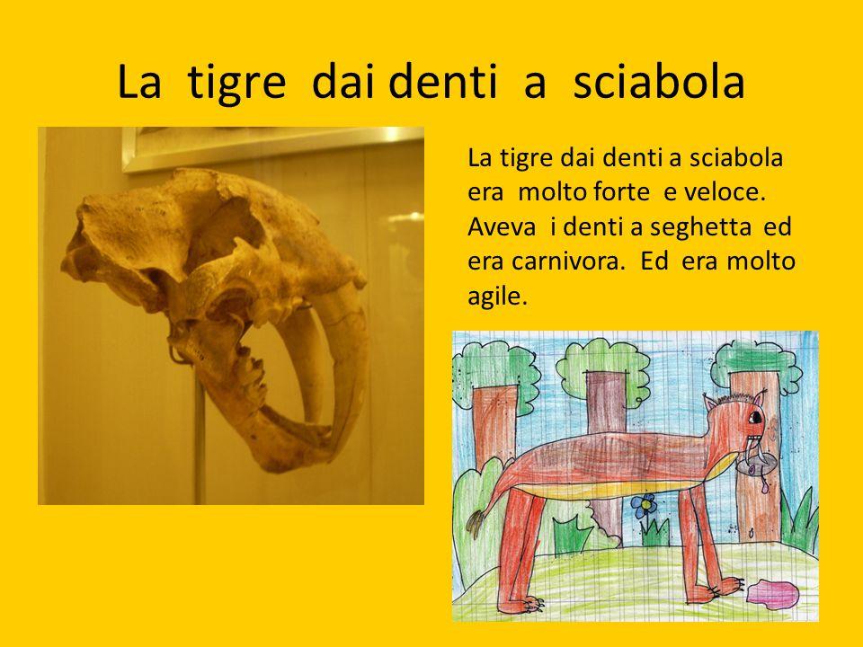La tigre dai denti a sciabola La tigre dai denti a sciabola era molto forte e veloce. Aveva i denti a seghetta ed era carnivora. Ed era molto agile.