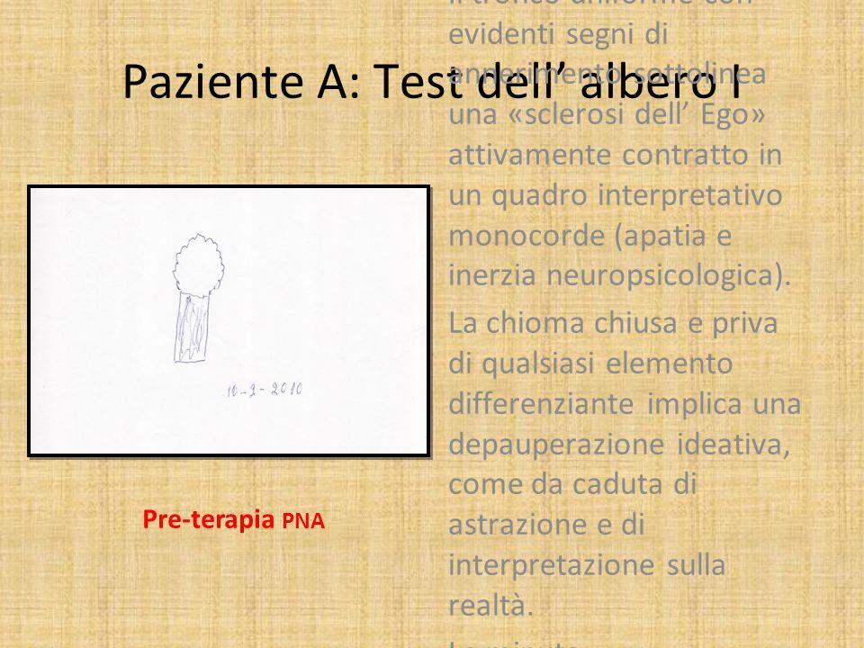 Paziente A: test dell' albero II L' assenza delle radici, stavolta si inserisce in un quadro generale alquanto differente, dove possono cogliersi un maggior sviluppo, armonia, e ricchezza di dettaglio della forma rappresentata.
