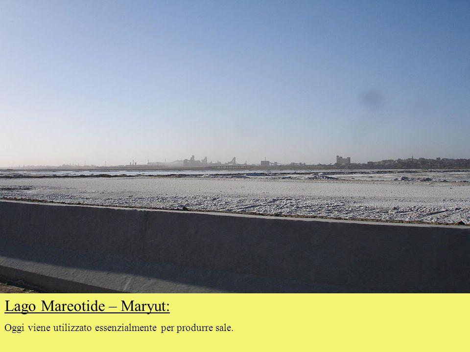 Lago Mareotide – Maryut: Oggi viene utilizzato essenzialmente per produrre sale.